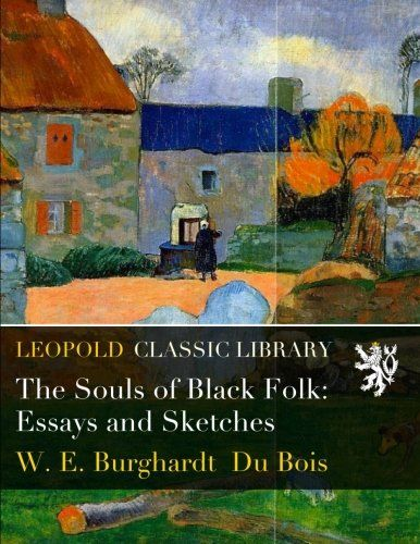 souls of black folk essays and sketches